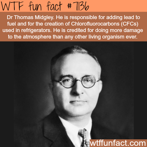 This man is responsible for the most damage to the environment - WTF fun facts