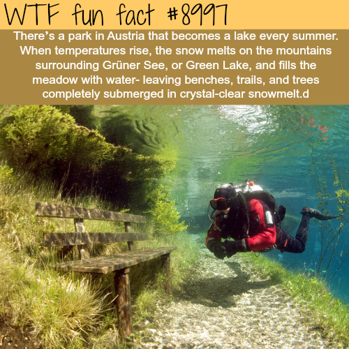 This park turns into a lake every summer - WTF fun fact
