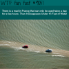 this road in france is 13 feet under water wtf