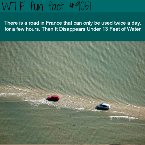 This road in France is 13 feet under water - WTF fun facts