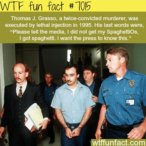 Thomas J. Grasso - WTF fun facts