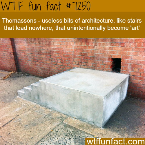 Thomasson's - WTF Fun Fact