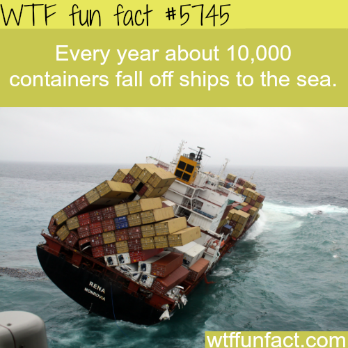 Thousands of containers fall of ships each year - WTF fun facts