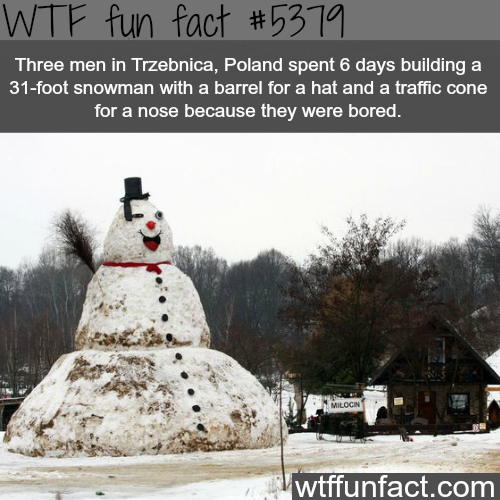 Three men in Poland built a 31-foot snow man - WTF fun facts