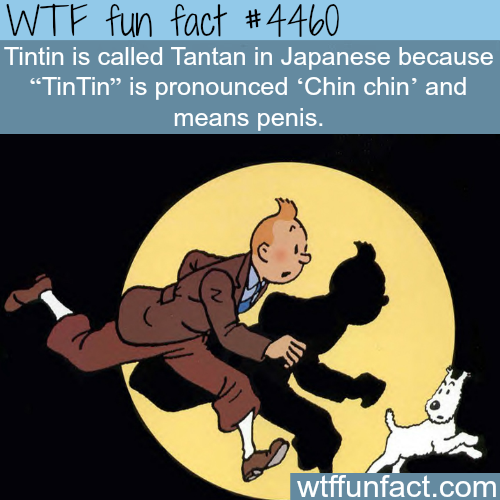Tintin in Japanese is Tantan -   WTF fun facts