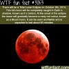 total lunar eclipse on october 8th 2014