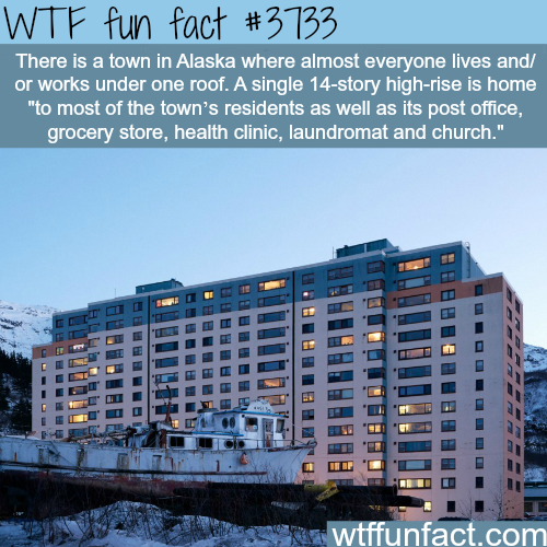 Town in Alaska where everyone works and lives in one building   WTF fun facts