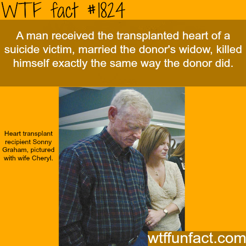 Transplanted heart of suicide victim -WTF fun facts