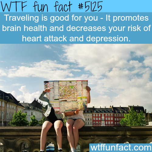 Traveling is good for your health - WTF fun facts