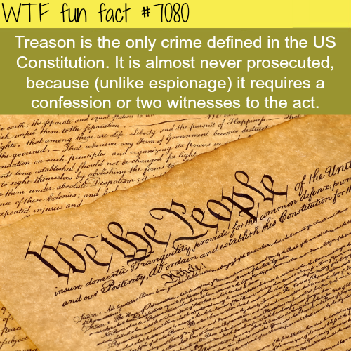 Treason - WTF fun facts