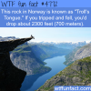 trolls tongue in norway wtf fun facts