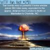 tsar bomba wtf fun facts