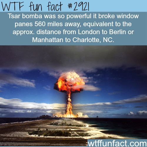Tsar bomba -  WTF fun facts
