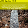 tsunami stones wtf fun facts