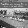 tug of war in the olympics wtf fun facts