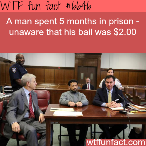 Two dollar bail - WTF fun facts