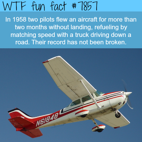 Two pilots flew an airplane for two months without landing - WTF fun facts