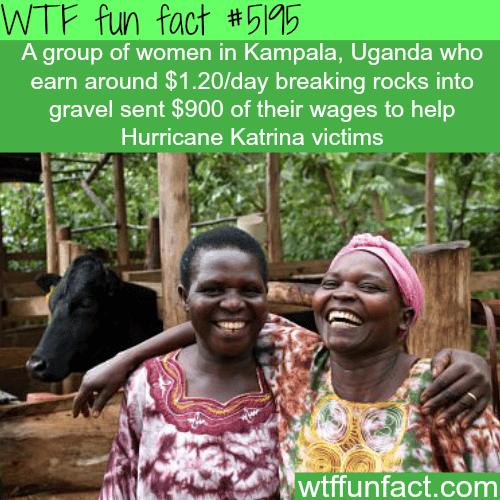 Ugandan women donate $900 to Hurricane Katrina victims - WTF fun facts