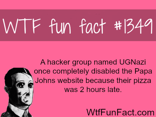 MORE OF WTF FUN FACTS are coming HERE