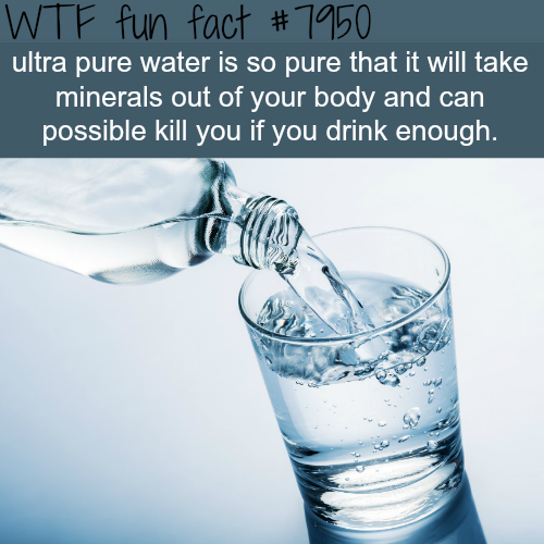 Ultra pure water can kill you - WTF fun fact