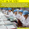 underage apple factory workers wtf fun fact