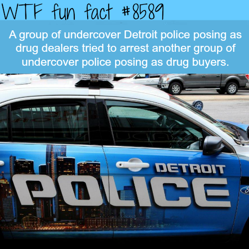 Undercover police tried to arrest undercover police officers - WTF fun facts