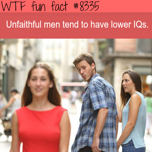 Unfaithful men -  WTF fun facts