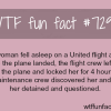 united airlines facts wtf fun fact
