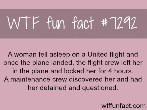United Airlines facts - WTF fun fact
