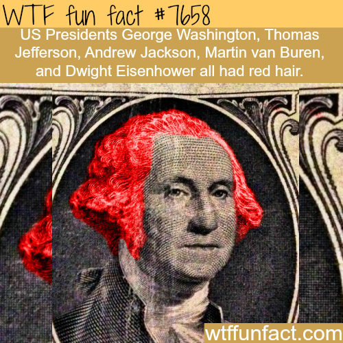 US presidents who had red hair -