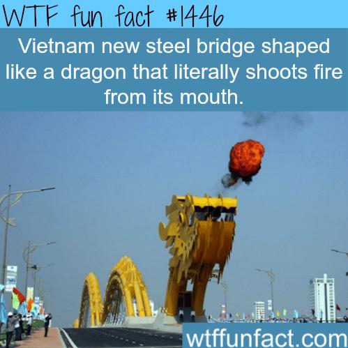 Vietnam dragon bridge
