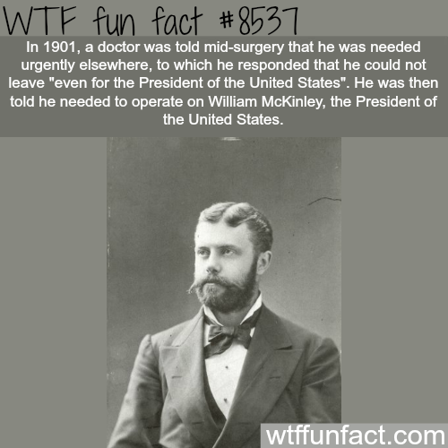 View our most popular facts for 2017 - WTF FUN FACTS