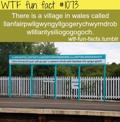 there is a village in wales called llanfairpwllgwyngyllgogerychwyrndrobwllllantysiliogogogoch