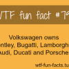 volkswagen owns bentley bugatti lamborghini audi ducati