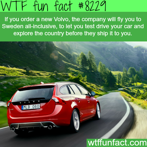 Volvo - WTF fun facts