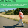 walking wtf fun fact