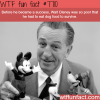 walt disney had to survive on dog food before he