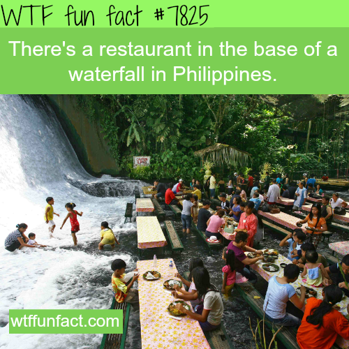Waterfall restaurants in the Philippines - WTF fun facts