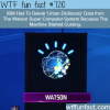watson super computer learned how to curse wtf