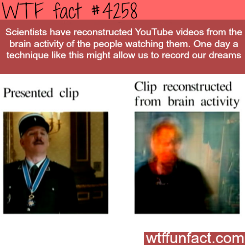 We might be able to record dreams! -  WTF fun facts