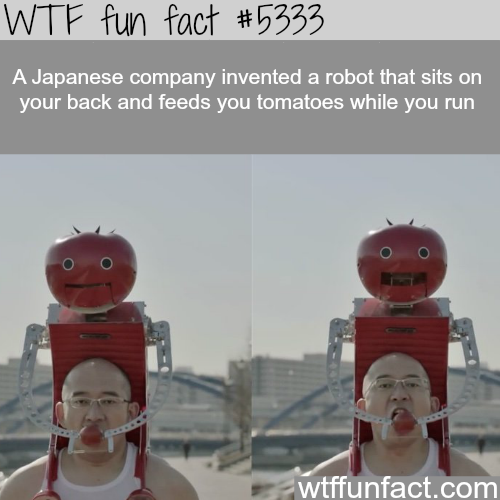 Weird inventions that you would see only in Japan - WTF fun facts