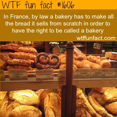 Weird laws - french bakery: WTF fun facts