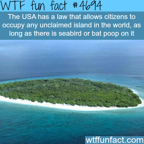 Weird laws of the USA - WTF fun facts