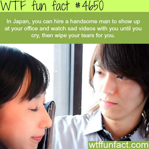 Weird stuff only found in Japan - WTF fun facts