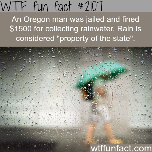 Weirdest laws and rules - WTF fun facts