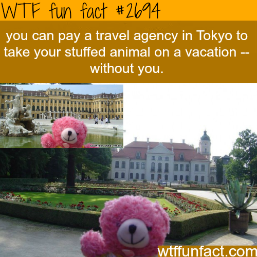 Weirdest things about Japan - WTF fun facts