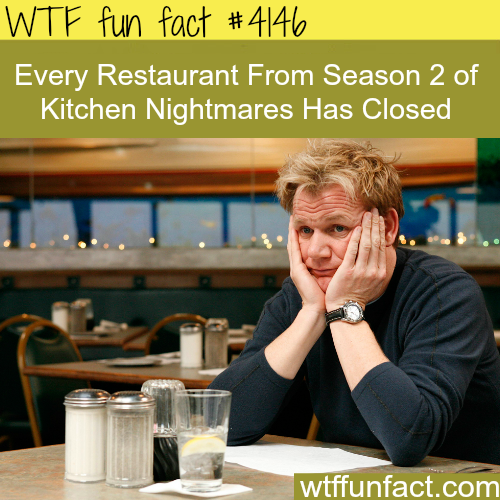 What happens to the restaurants in Kitchen Nightmares -  WTF fun facts
