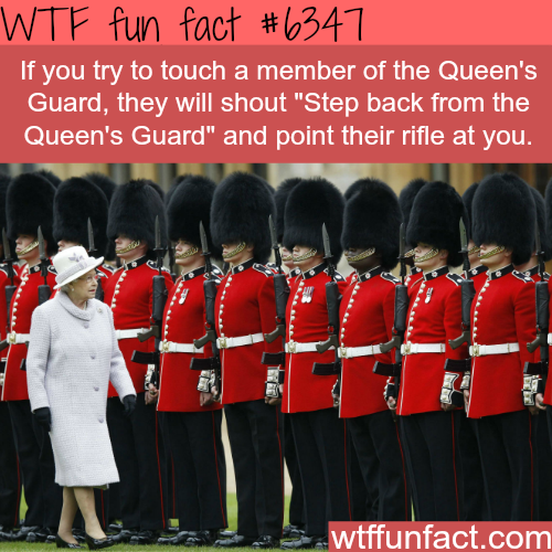 What happens when you touch the Queen's Guard - WTF fun facts