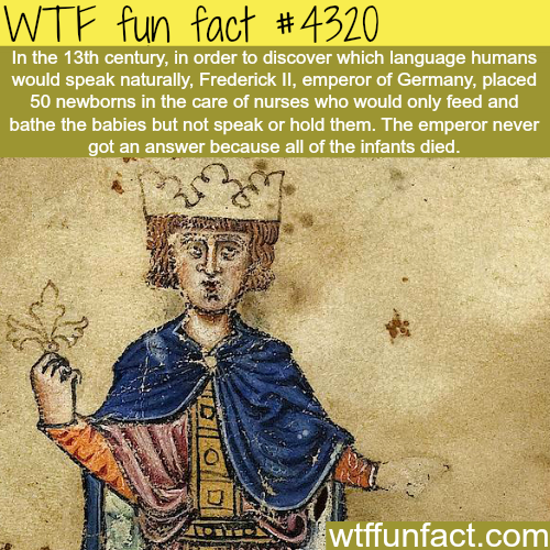 What language would humans naturally speak -  WTF fun facts