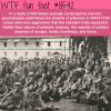 what prisoners of war dreamed of wtf fun facts